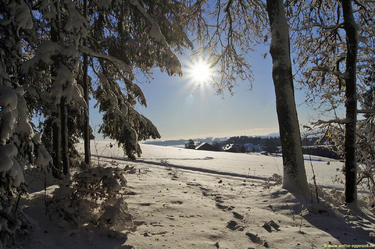 http://wetter-eggerszell.de/naturbilder/winter/06.01.2017---herrliches-winterwetter-im-bayerwald.html